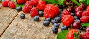 The 2nd International Conference «Berries of Russia 2019»